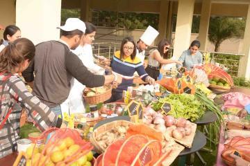 food truck culinary team activity