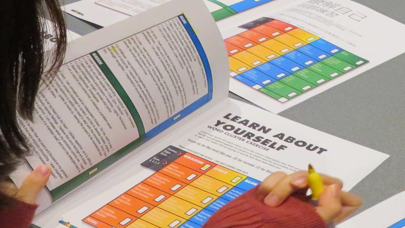 Colour Assessment