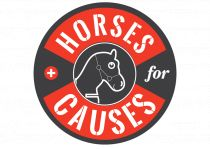 horses for causes logo