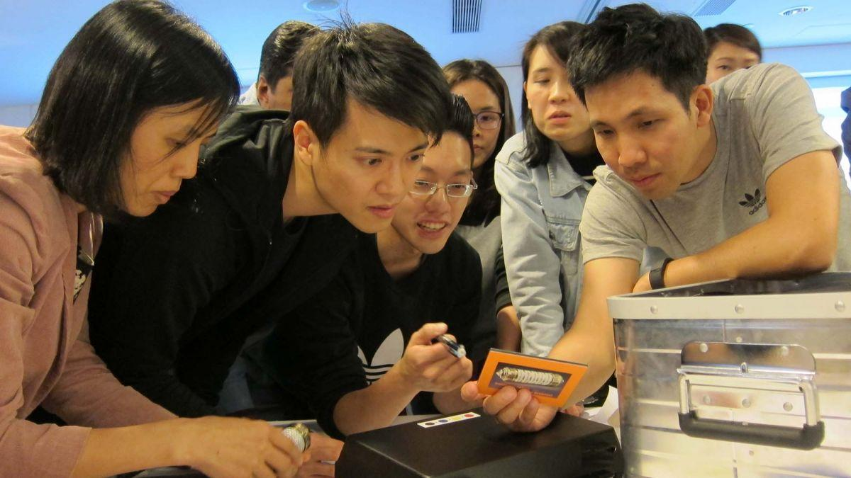 employees collaborate at rewarding team building challenge - new
